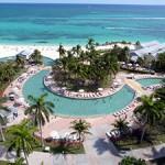 Palm trees-pool